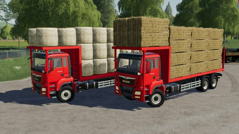MAN TGS 18.500 Bale Transport AutoLoad